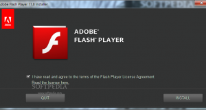 Macromedia-Flash-Player_1